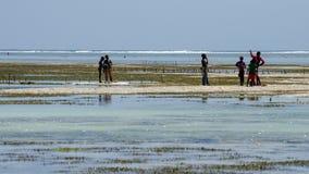 African children playing in the ocean. Near seaweed farm Zanzibar, Tanzania - February 2019 stock photo