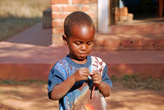 African children suffering from AIDS virus in the Village of Pom Royalty Free Stock Images