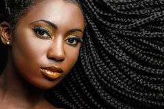 African cosmetic portrait of woman showing braided hairstyle. Extreme close up beauty portrait of young african woman showing long braided hair next to face Royalty Free Stock Image