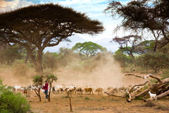 African country Stock Photos