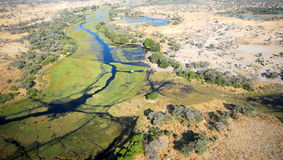 The african Delta. In Botswana shot from a light plane Royalty Free Stock Photos