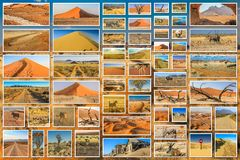 African desert collage Royalty Free Stock Photo