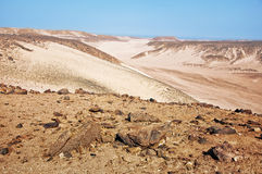 African desert in Hurghada Royalty Free Stock Photography