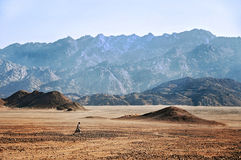 African desert in Hurghada Stock Images