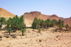 African desert landscape Stock Photo