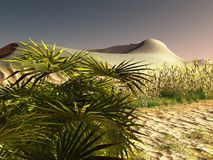 African desert with lavish and lively plants 3d rendering. African desert with lavish and lively plants Royalty Free Stock Image