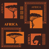 African design. Stock Photo