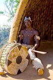 African drum. An african zulu tribe young man wearing traditional clothes sitting inside a hut and playing with an african drum Royalty Free Stock Photography
