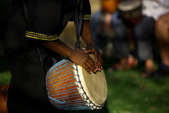 African Drummer. African traditional drummer Royalty Free Stock Images