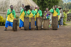 African drummers - Rwanda. MUSANZE, RWANDA - Tribal Drummers of the Batwa Tribe Perform Traditional Intore Dance to Celebrate the Birth of an Endangered Mountain Stock Photos