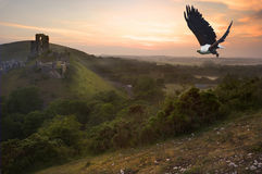 African eagle in flight over magical castle Stock Photos
