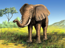 African elephant. Wildlife: elephant in its native african environment. Digital illustration royalty free illustration