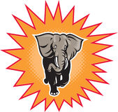 African elephant charging halftone dots Stock Photography