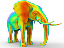 African elephant - rainbow colored Stock Image