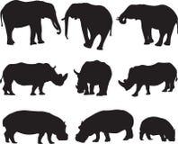 African elephant,white rhinoceros and hippo silhouette contour Stock Photos