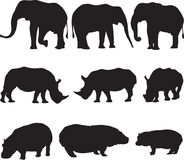 African elephant,white rhinoceros and hippo silhouette contour Stock Photography