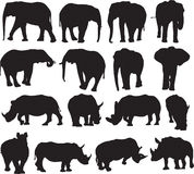 African elephant and white rhinoceros silhouette contour Stock Photo