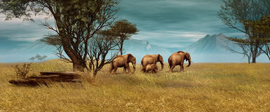 African Elephants, 3d CG. 3D computer graphics of a elephant herd in the African savanna Royalty Free Stock Photos