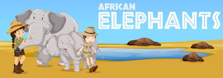 African elephants and people in the field. Illustration Royalty Free Stock Image