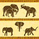 African elephants set Royalty Free Stock Photo