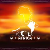 African ethnic background on evening savanna. Landscape royalty free illustration