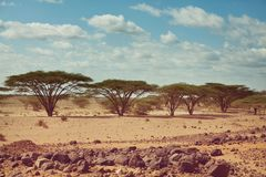 African expedition. Safari and extreme travel in Africa. Drought mountain landscape with dust off road in offroad car expedition stock photos