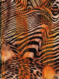 African fabric background Stock Image