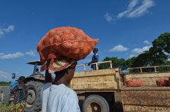 African farmer Royalty Free Stock Photos