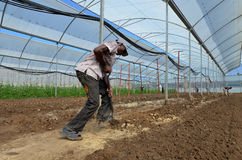 African farmers Royalty Free Stock Photos