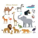 African Fauna Species. Cute Animals Flat Vector. African fauna species. Cute african animals flat vector. Southern predators. Camel, zebra, rhino, gorilla Stock Photo