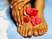 African Female feet and hand, blue pedicure Stock Photos