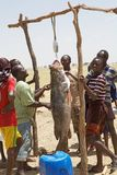 African fishermen and fish Stock Images