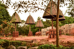 African forest elephant zoo Stock Images