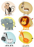 African Jungle Animals Collection Royalty Free Stock Image