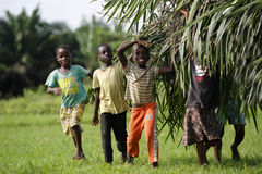 African kids help with carring palm leaves. Out of the jungle royalty free stock image
