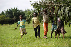African kids help with carring palm leaves. Out of the jungle stock photo
