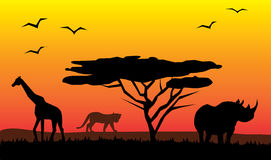 African landscape. With different animals Stock Photo