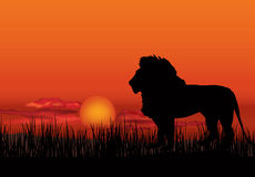 African landscape with animal silhouette. Savanna background. African landscape with lion silhouette. Savanna sunset background stock illustration