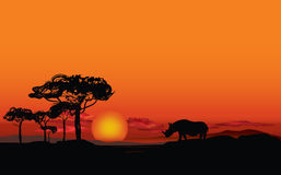 African landscape with animal silhouette. Savanna background. African landscape with animal silhouette. Savanna sunset background Stock Image