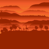 African landscape with animal silhouette. Savanna sunset background Royalty Free Stock Images