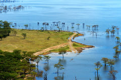 African landscape, bird's-eye view on lake Nakuru Stock Image