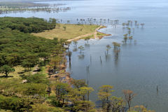 African landscape, bird's-eye view on lake Nakuru Stock Photography