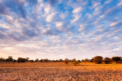 African landscape. Breathtaking vie of an african landscape Stock Photography