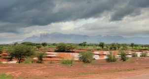 African landscape. Close to the mythical city of Timbuktu Stock Photography