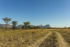 African landscape and dirt road. In the early morning Royalty Free Stock Photos