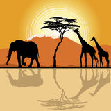 African landscape with giraffes and elephant. African landscape  in sunset time with giraffes and elephant. Vector Stock Photo