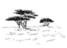 African landscape. Hand sketch of the African landscape Royalty Free Stock Images