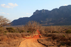 African landscape in Kenya Stock Photo