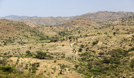 African landscape. Omo Valley. Ethiopia. Stock Image