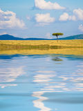 African landscape with reflection Royalty Free Stock Photo